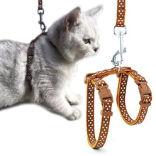 Load image into Gallery viewer, 2019 Adjustable Dog Collar For Cats Collars Necklace