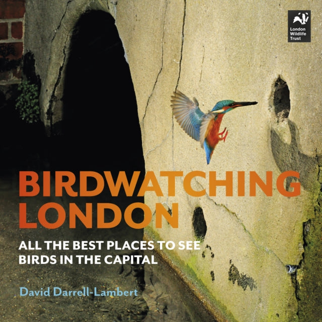 Birdwatching London : All the Best Places to See Birds in the Capital-9780993291159