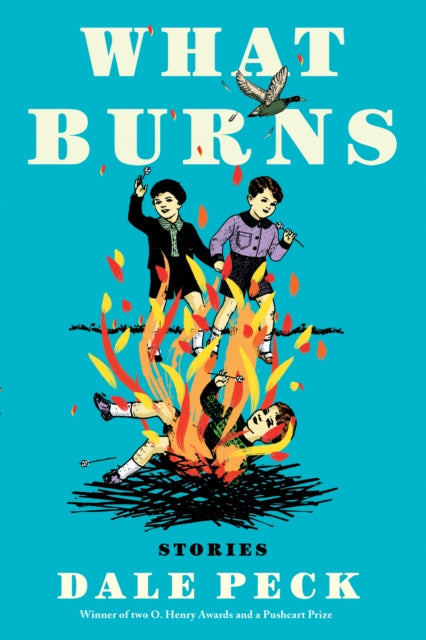 What Burns-9781641290821