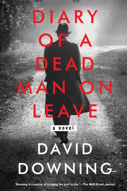 Diary Of A Dead Man On Leave-9781641291293