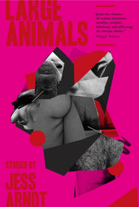 Large Animals-9781916355309