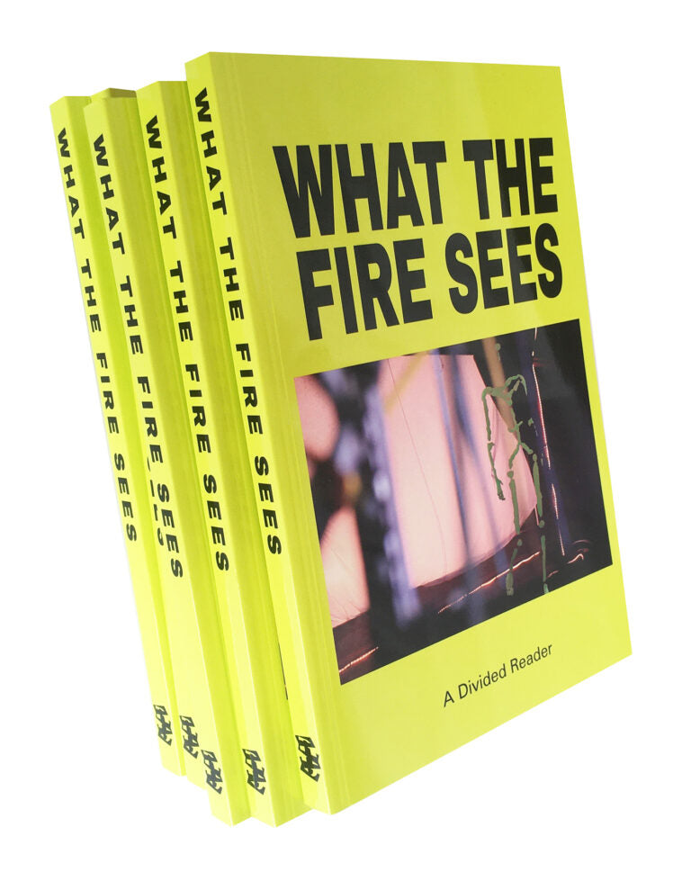A Divided Reader: What the Fire Sees