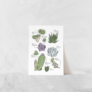 Prints- The Botanicals