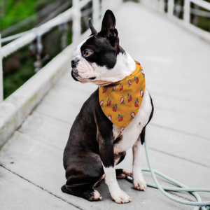 Strawberry Pet Bandana