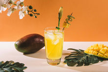 Load image into Gallery viewer, Instant drink MANGO Bragulat | 15 units