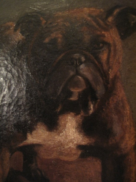 Toy Bulldog, Oil on Canvas Signed Painting by Marguerite Kirmse