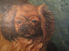 Antique Signed Pekingese or Japanese Chin Dog Oil Portrait, G. Morlaux, 1928