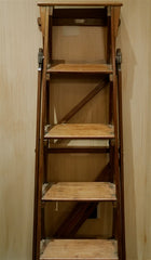 Fruitwood Library Steps 19th Century Ladder