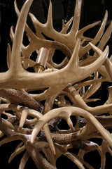 Fourteen Light Faux Antler Chandelier