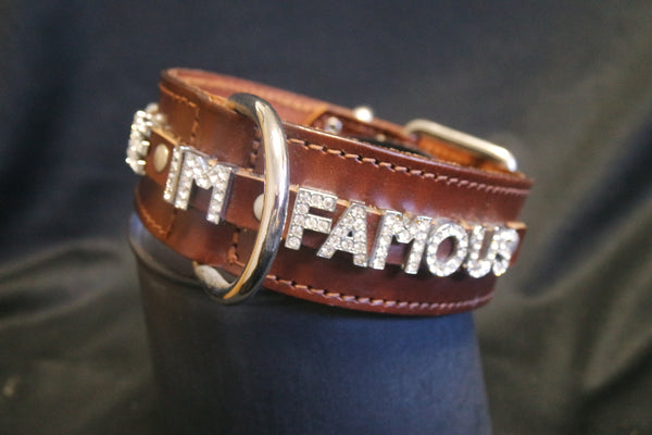 "Doggie Dog ""Hug Me I'm Famous"" Dog Collar with Swarovski Crystals"