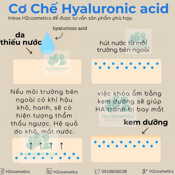 Kem Dưỡng Peter Thomas Roth Water Drench Hyaluronic Acid Moisturizer