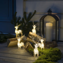 Load image into Gallery viewer, Konstsmide 5 Piece Acrylic Reindeer LED Set
