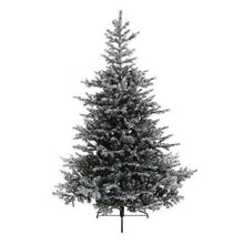 Load image into Gallery viewer, Kaemingk Snowy Grandis Fir Christmas Tree 7ft/210cm