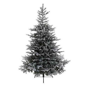 Kaemingk Snowy Grandis Fir Christmas Tree 6ft/180cm