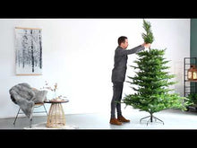 Load and play video in Gallery viewer, Kaemingk Snowy Grandis Fir Christmas Tree 7ft/210cm