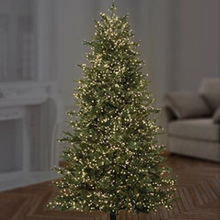 Load image into Gallery viewer, Premier TreeBrights 1000 Warm White LED Christmas String Lights