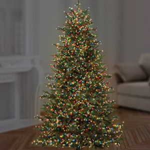 Premier TreeBrights 1000 Multi Coloured LED Christmas String Lights