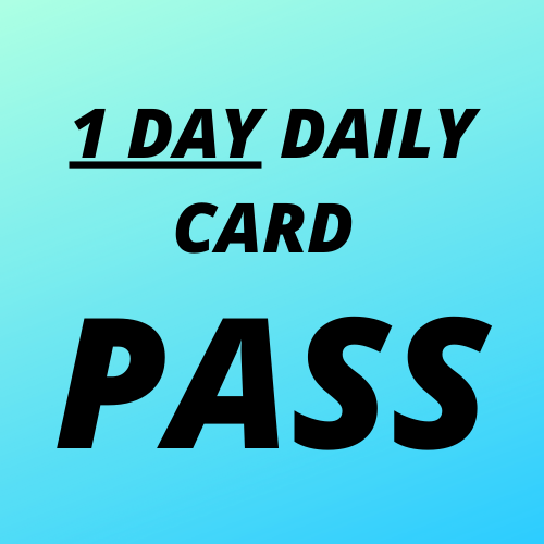 1 SINGLE DAILY CARD💰