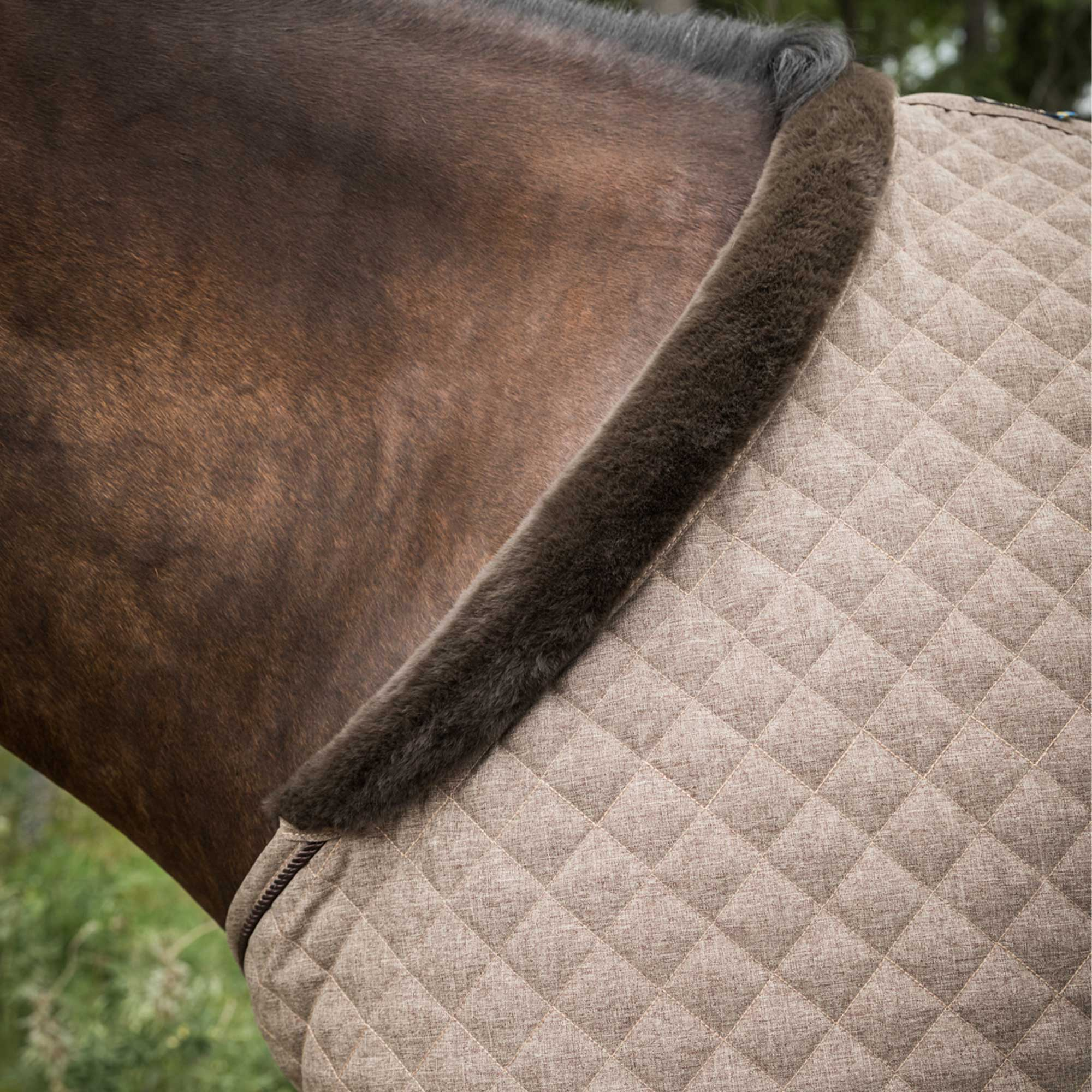 Haze Collection Horse rug