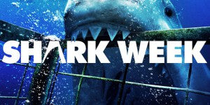 Shark Week Returns! We see some Quik Pod's being used.