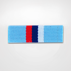 Load image into Gallery viewer, Ribbon Covered ROA Merit Pin Front