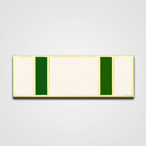 Load image into Gallery viewer, 5-Stripe White/Green Merit Pin-Bar