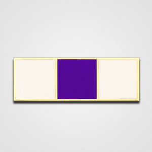 3-Stripe White/Purple Merit Pin-Bar