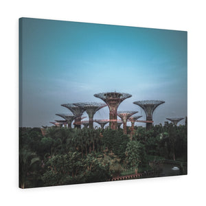 Singapore (Gardens by the Bay) Canvas Gallery Wraps