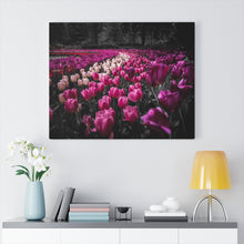Load image into Gallery viewer, Netherlands (Keukenhof) Canvas Gallery Wraps