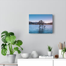 Load image into Gallery viewer, New Zealand (Wanaka Tree) Canvas Gallery Wraps