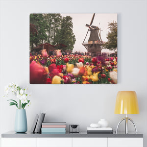 Netherlands (Keukenhof) Canvas Gallery Wraps