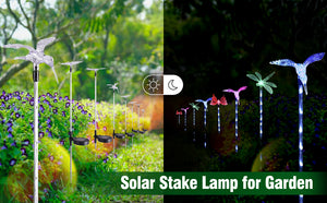Hardoll Butterfly Dragonfly Hummingbird Solar LED Garden Light for Home