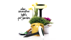 Best Solar Outdoor Garden Decorative Lights India | Hardoll Enterprises