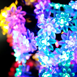 Hardoll® 30 LED-20ft Multi Color Lotus Shape Solar Decorative Waterproof String Lights for Garden, Home, Outdoor