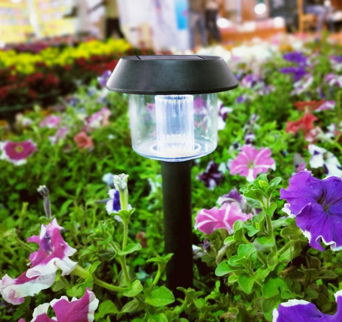 Hardoll Solar Lights For Home Garden Outdoor Waterproof Path Lamp (Cool White)