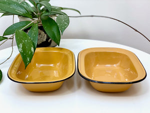 Vintage enamel dishes (x2)