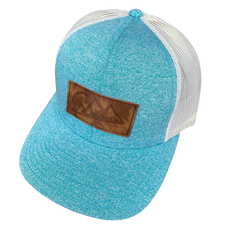 Low Pro Curved Bill Hat - Teal