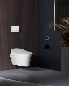 Veil Intelligent one-piece WC with Remote Control