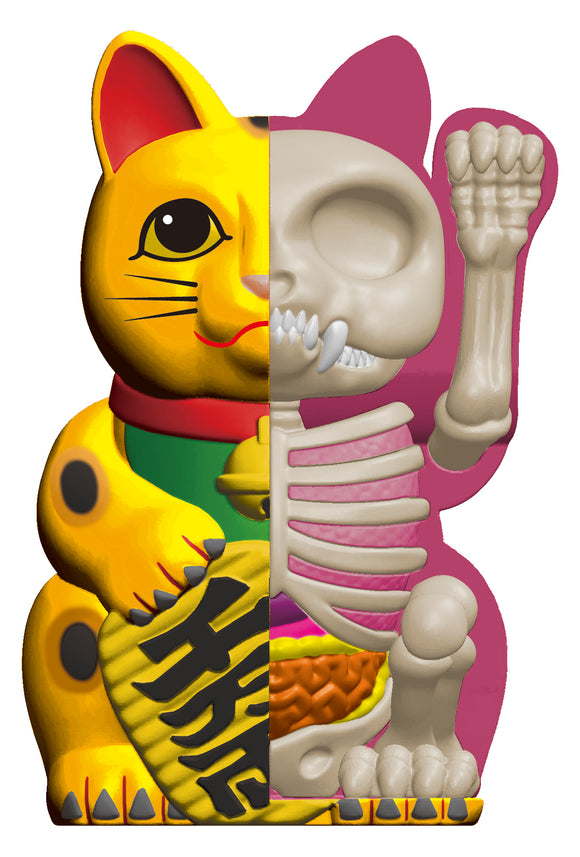 4D Half Fortune Cat Anatomy (Gold)