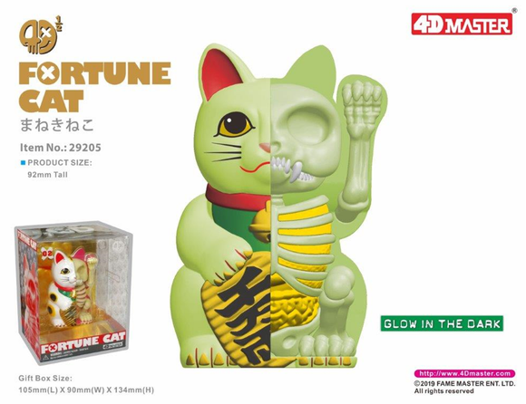 4D Half Fortune Cat Anatomy (GID)