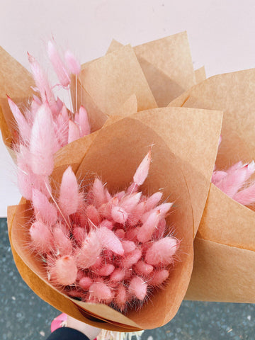 Pink Bunny Tails - MUD Urban Flowers