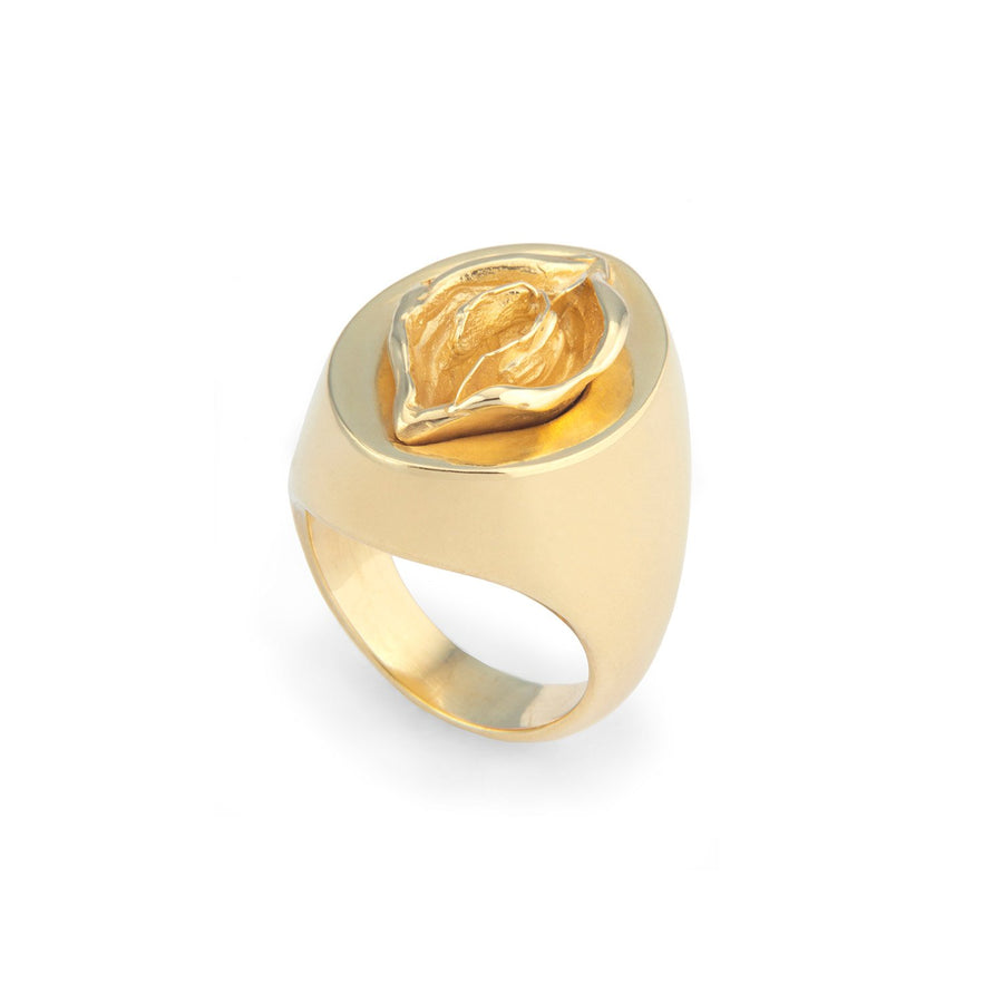 Anel Audre Gold Plated