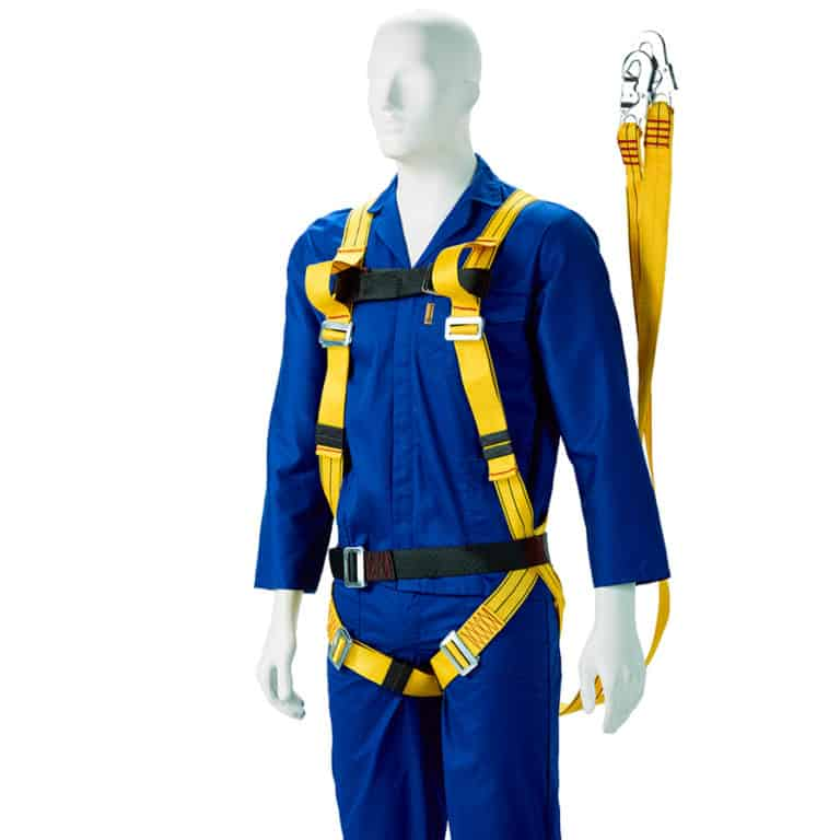 Double Harness with Belt