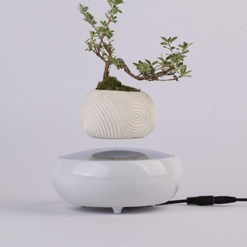 Levitating Bonsai 1.0