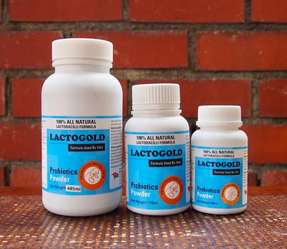 Lactogold Probiotics Powder (3 sizes)