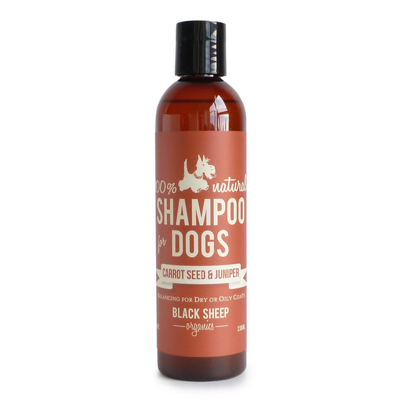 [CARSH8] Black Sheep Organics Carrotseed & Juniper Organic Shampoo for Dogs (8oz/236ml)