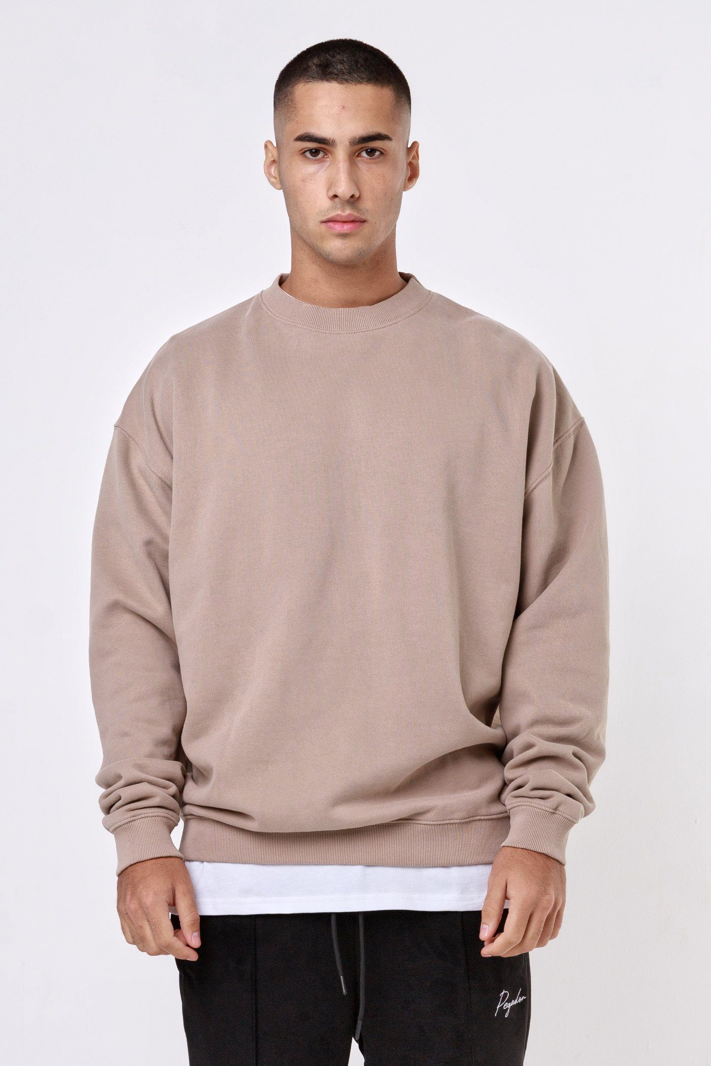 Heavy Oversized Sweater Washed Taupe SWEATER One blood