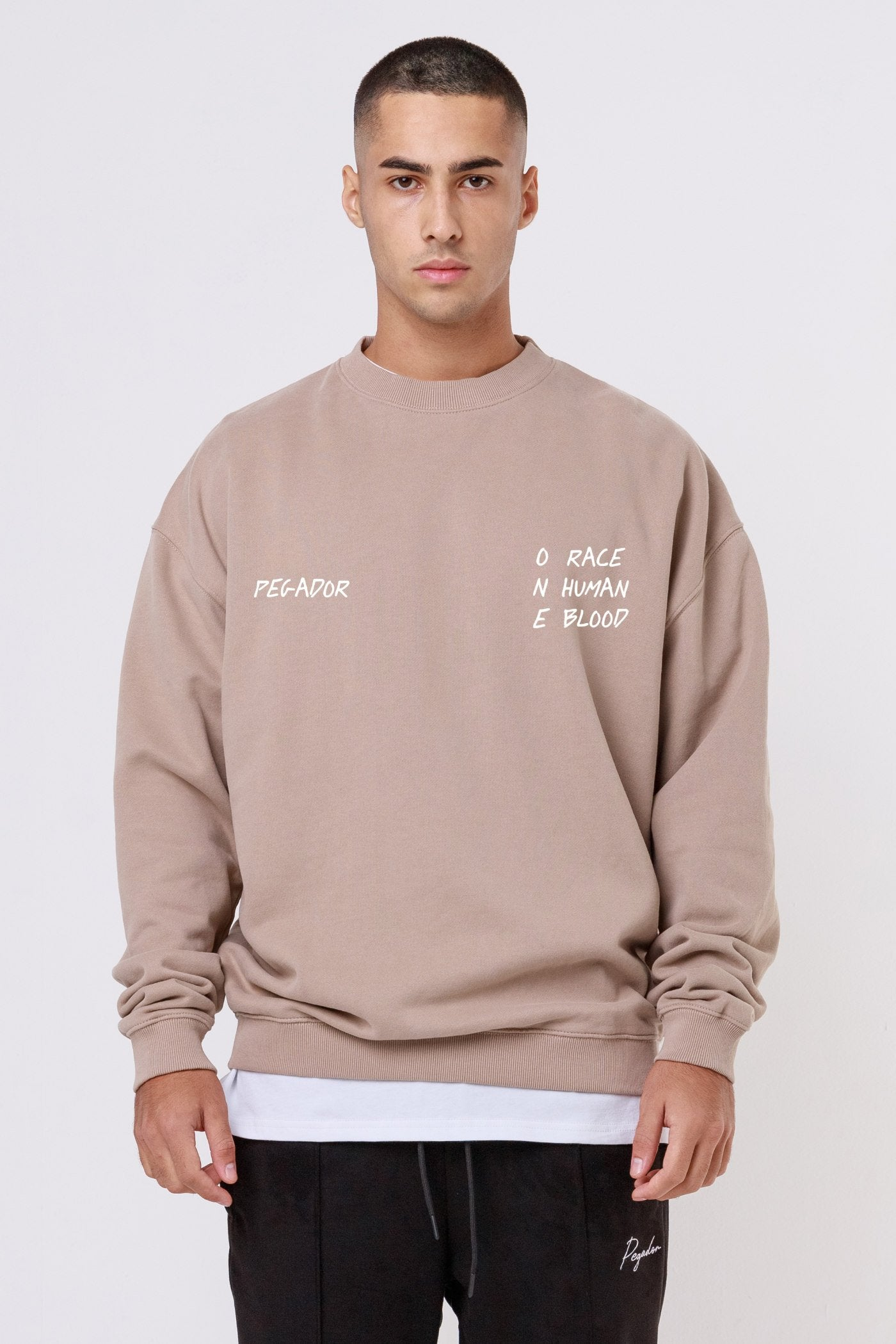Oakland Oversized Sweater Washed Taupe SWEATER One blood