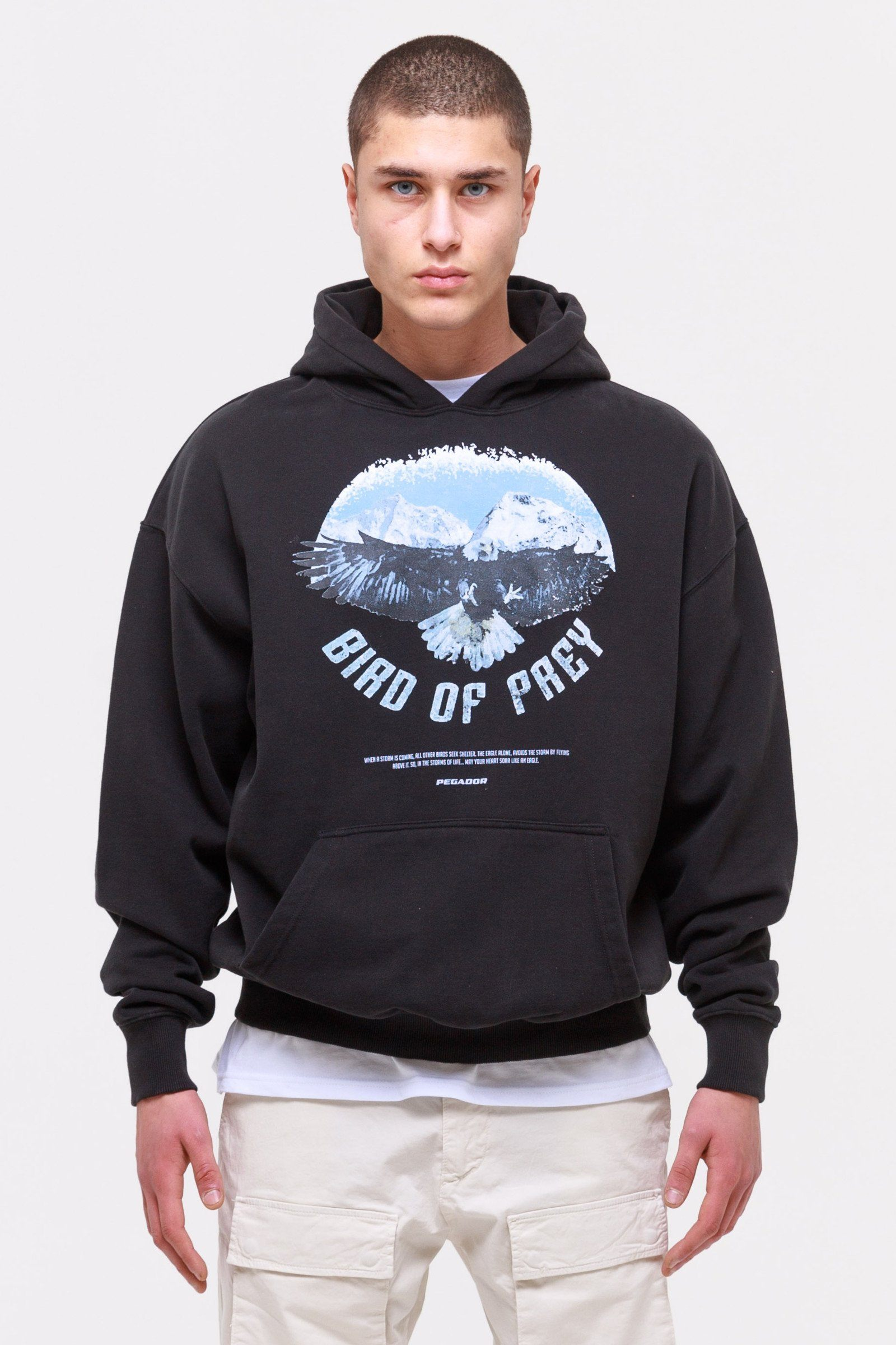 Eagle Oversized Hoodie Washed Black Hoodie Wild Society