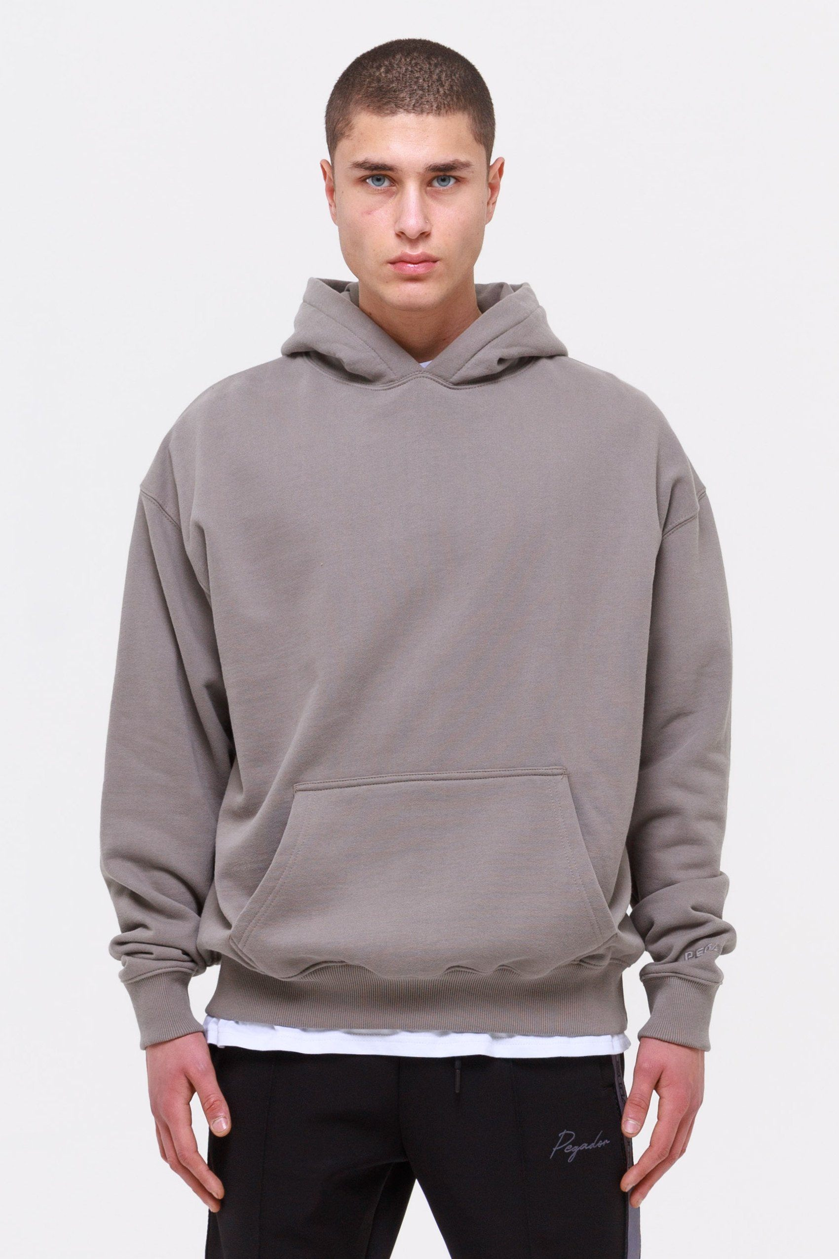 Oversized Hoodie Washed Frost Grey Hoodies Wild Society